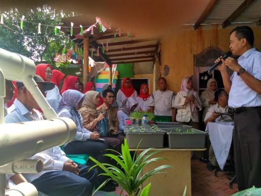 Kampung Hidroponik Bekasi Timur ...